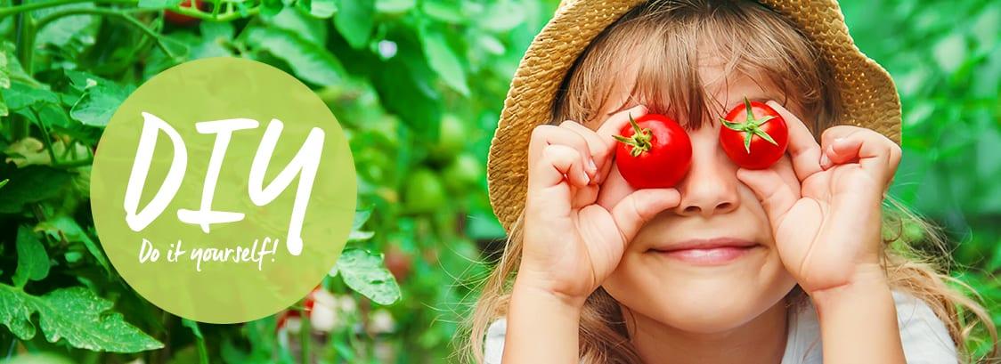 Do-It-Yourself Tomaten pflanzen