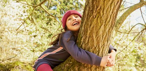 Mädchen spielt Baumsuche