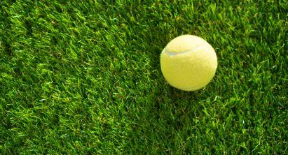 Gartenspiel: Tennisball liegt im Gras